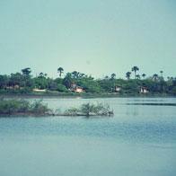 logo-souimanga-lodge-delta