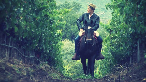 route-des-vins-chaine-voyage
