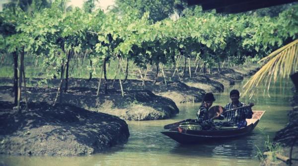 route-des-vins-documentaire