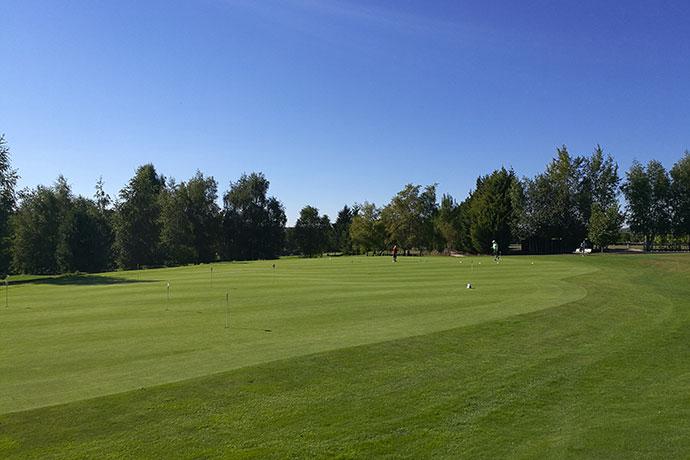 golf-green-vert