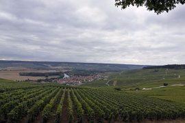 besserat-de-bellefon-region-champagne