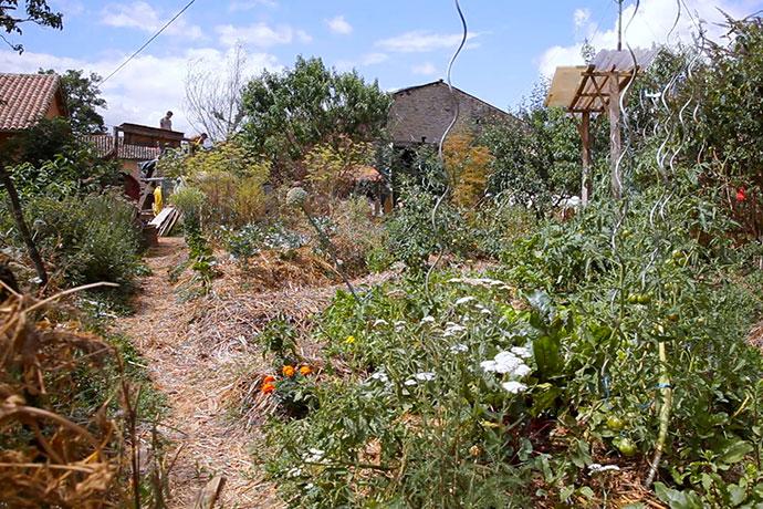 eveil-permaculture-jardin