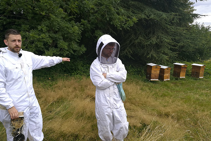 apiterra-ruches
