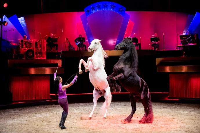 les-folies-gruss-dressage-chevaux